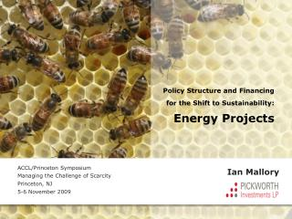 Policy Structure and Financing for the Shift to Sustainability: Energy Projects