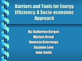 Barriers and Tools for Energy Efficiency: A Socio-economic Approach