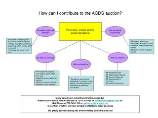 How can I contribute to the ACDS auction?