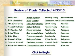 Review of Plants Collected 4/30/13