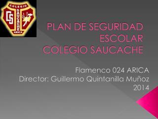 PLAN DE SEGURIDAD ESCOLAR COLEGIO SAUCACHE