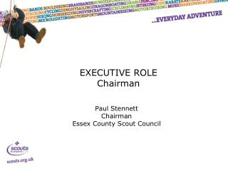 EXECUTIVE ROLE Chairman
