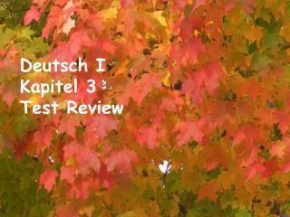 Deutsch I Kapitel 3 Test Review