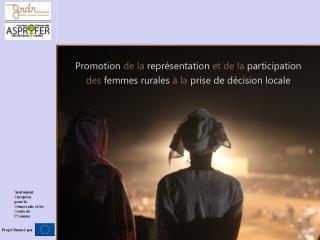 Promotion  de la  représentation  et de la  participation