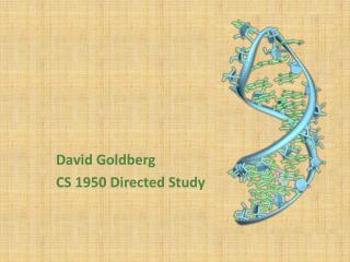 David Goldberg CS 1950 Directed Study
