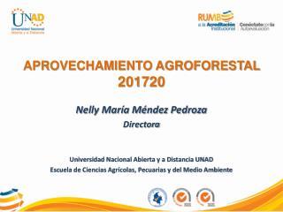 Nelly María Méndez Pedroza Directora Universidad Nacional Abierta y a Distancia UNAD