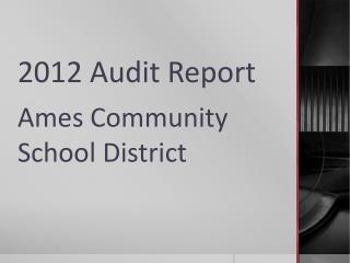 2012 Audit Report