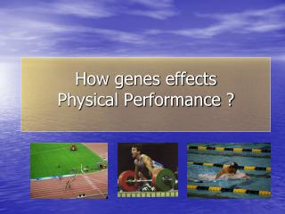 How genes effects  Physical Performance ?