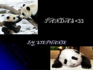 PANDAS  <33