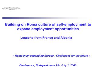 Building on Roma culture of self-employment to expand employment opportunities