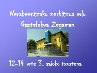 Nerabeentzako zerbitzua edo Gaztelekua Zegaman