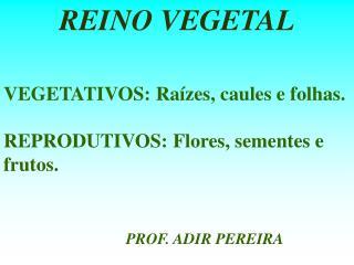 VEGETATIVOS: Raízes, caules e folhas. REPRODUTIVOS: Flores, sementes e frutos.