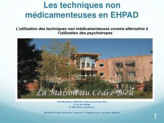 Les techniques non médicamenteuses en EHPAD