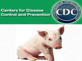 "Swine Flu is a respiratory disease of pigs caused by type ""A"" influenza viruses."