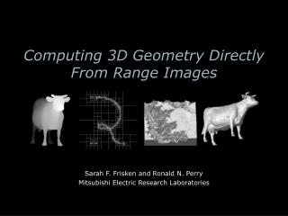 Computing 3D Geometry Directly From Range Images