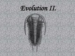 Evolution II.