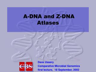 A-DNA and Z-DNA  Atlases