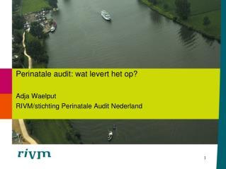 Perinatale audit: wat levert het op? Adja Waelput RIVM/stichting Perinatale Audit Nederland