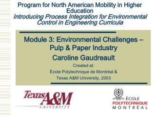 Module 3: Environmental Challenges – Pulp & Paper Industry Caroline Gaudreault Created at: