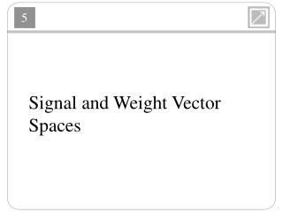 Signal  and Weight Vector  Spaces