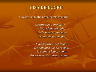 FISA DE LUCRU