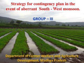 Strategy for contingency plan in the event of aberrant  South - West monsoon. GROUP – III