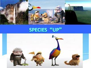 """SPECIES """" UP """""""
