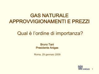 Roma, 29 gennaio 2009