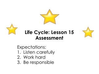 Life Cycle: Lesson 15 Assessment