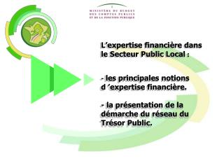L�expertise financi�re dans   le Secteur Public Local  :