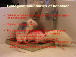 Biological boundaries of behavior