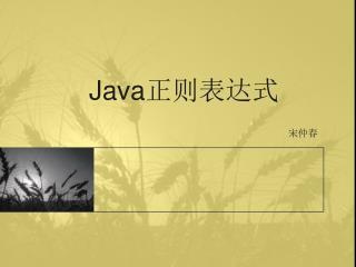 Java 正则表达式
