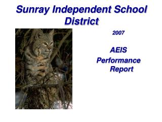 Sunray Independent School District