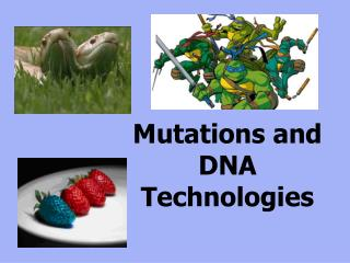 Mutations and DNA Technologies