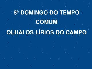 8º DOMINGO DO TEMPO COMUM OLHAI OS LÍRIOS DO CAMPO