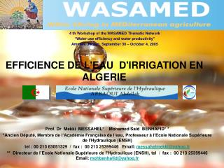 "4 th  Workshop of the WASAMED Thematic Network ""Water use efficiency and water productivity"""