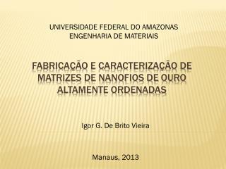 Fabricação e caracterização de matrizes de nanofios de ouro altamente ordenadas