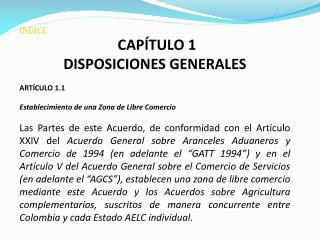 INDICE CAPÍTULO 1 DISPOSICIONES GENERALES  ARTÍCULO 1.1