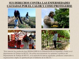 SUS DERECHOS CONTRA LAS ENFERMEDADES CAUSADAS POR EL CALOR Y COMO PROTEGERSE