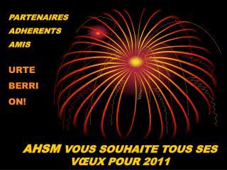 AHSM  VOUS SOUHAITE TOUS SES VŒUX POUR 2011