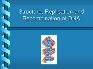 Structure, Replication and Recombination of DNA