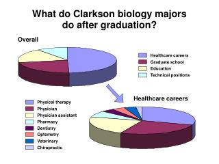 What do Clarkson biology majors do after graduation?