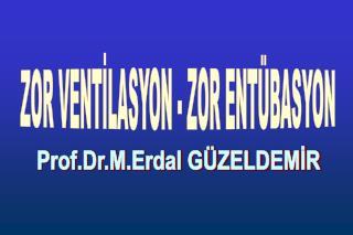 Prof.Dr.M.Erdal GÜZELDEMİR