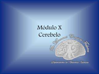 Módulo X Cerebelo