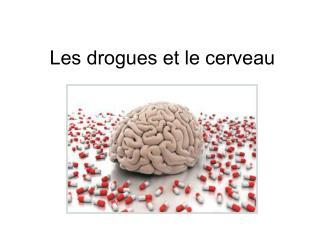 Les drogues et le cerveau