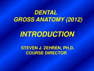 DENTAL        GROSS ANATOMY (2012) INTRODUCTION