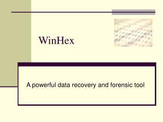 WinHex
