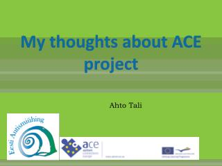 My thoughts about ACE project