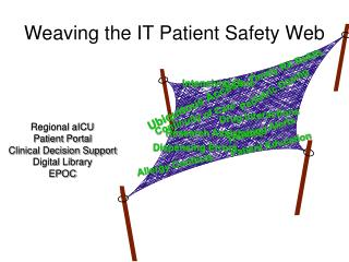 Weaving the IT Patient Safety Web