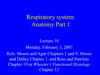 Respiratory system:  Anatomy Part 1